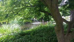 Freiburg stimmt ein 2016 -Stadtgartenidylle (fs)