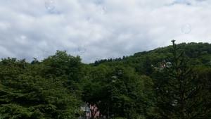 Freiburg stimmt ein 2016 - Die Seifenblasen auf Kurztrip Richtung Schlossberg (fs)