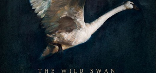 vance_foy_Wild_Swan